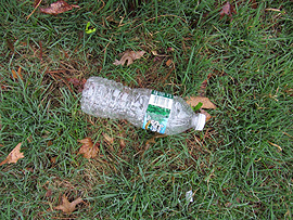 Trash on lawn of Downhill Senior Home